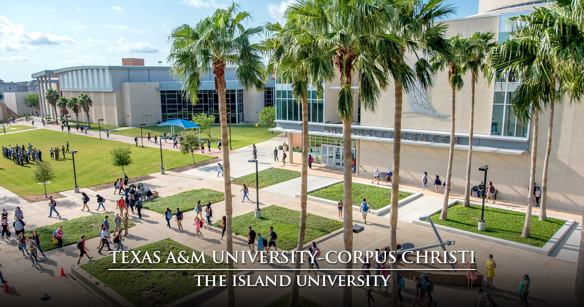 Welcome to S A I L  Texas A&M University-Corpus Christi