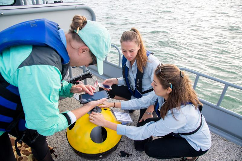 Texas Water Quality Data Review Reveals Health Status of Coastal Bays, Estuaries